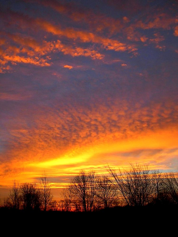 Photo in Random #sky #sunrise #fiery #orange #landscape #weather #clouds