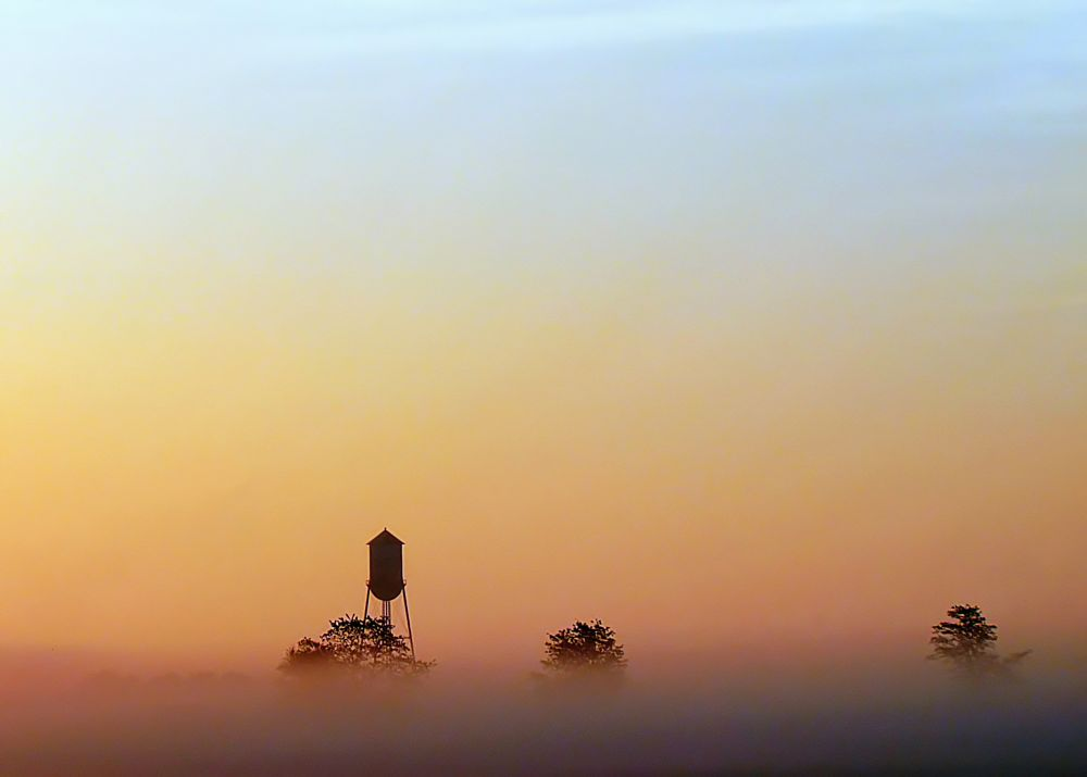 Photo in Random #fog #morning #dawn #sunrise #predawn #colorful #silhouettes #water tower #trees #pinks #blue #purple