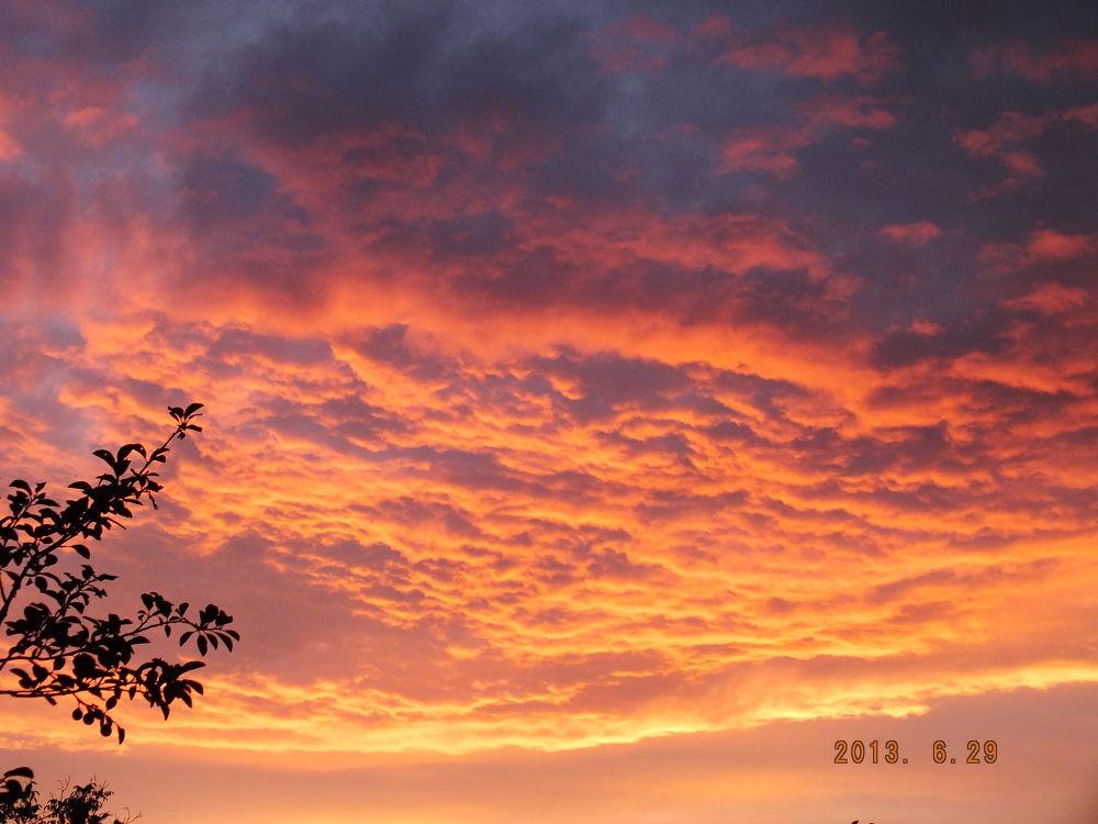 Photo in Random #red #sunrise