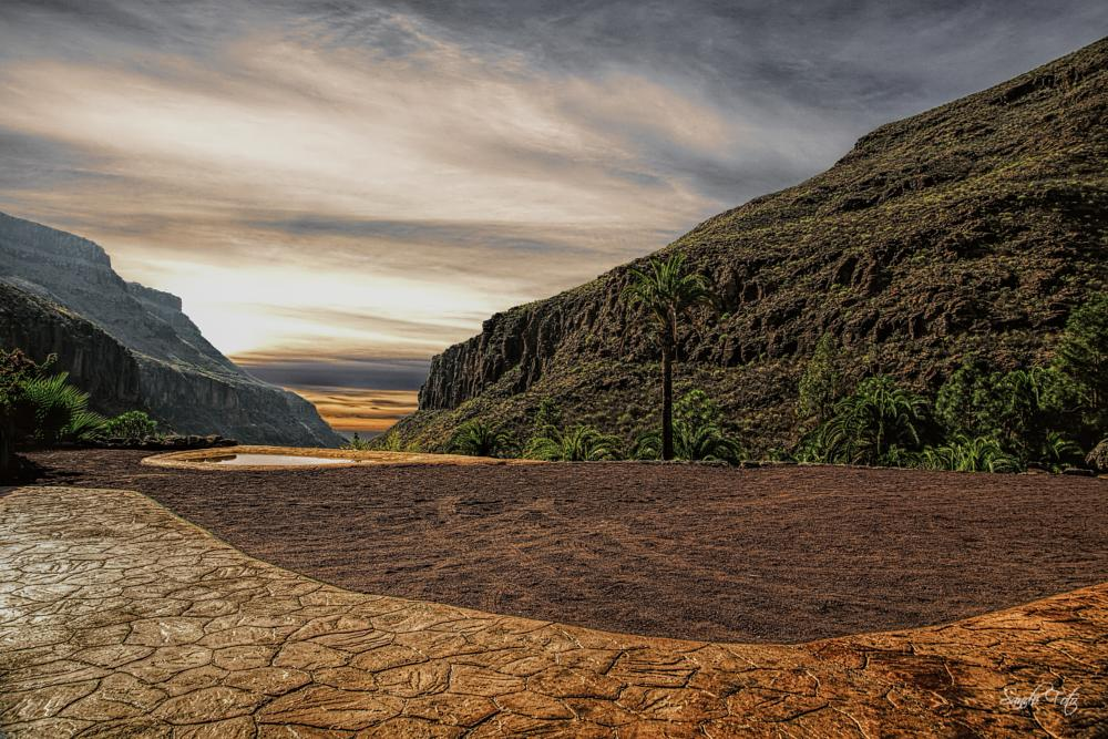 Photo in Landscape #platou #canaryisland #landscape
