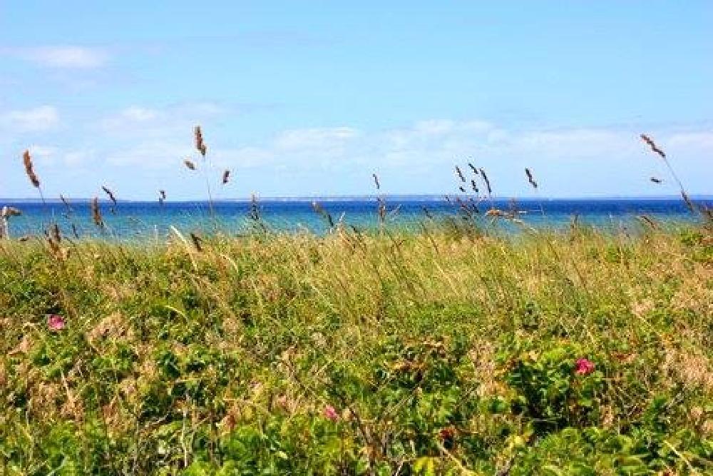 Photo in Landscape #marthasvineyard #ocean #summer #beach #water