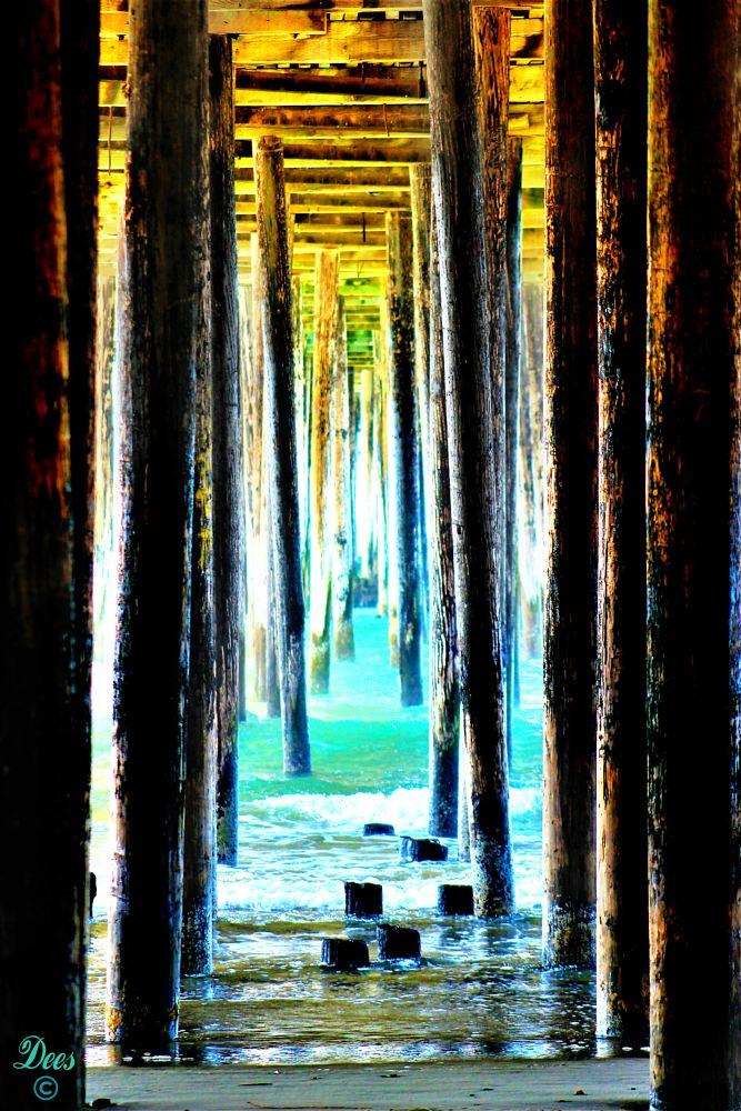 Photo in Sea and Sand #derek oliverdees crossphot