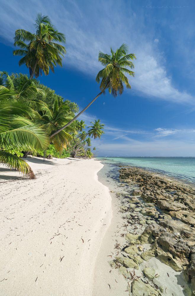 Photo in Landscape #seychelles #alphonse island #alphonse atoll #paradise #seascapes #indian ocean #nikon dslr #nikon d750 #irix lens 15mm