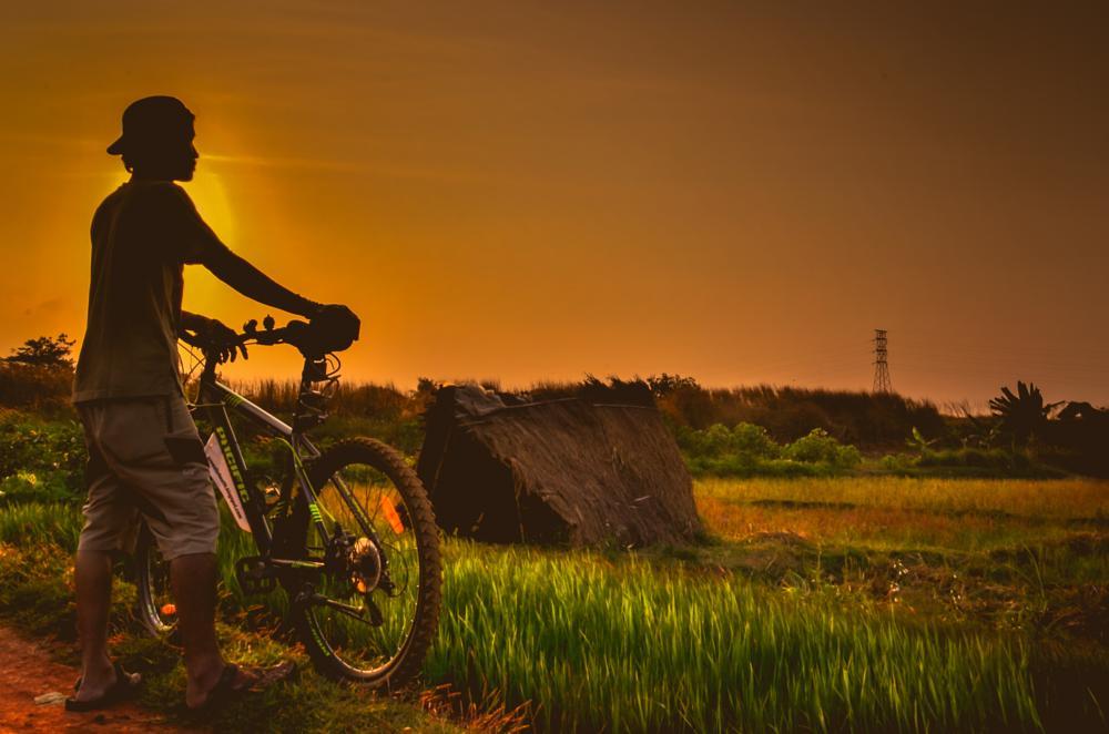 Photo in Landscape #sunset #field #bike