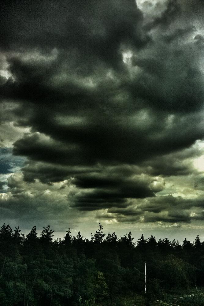 Photo in Random #mobile photo