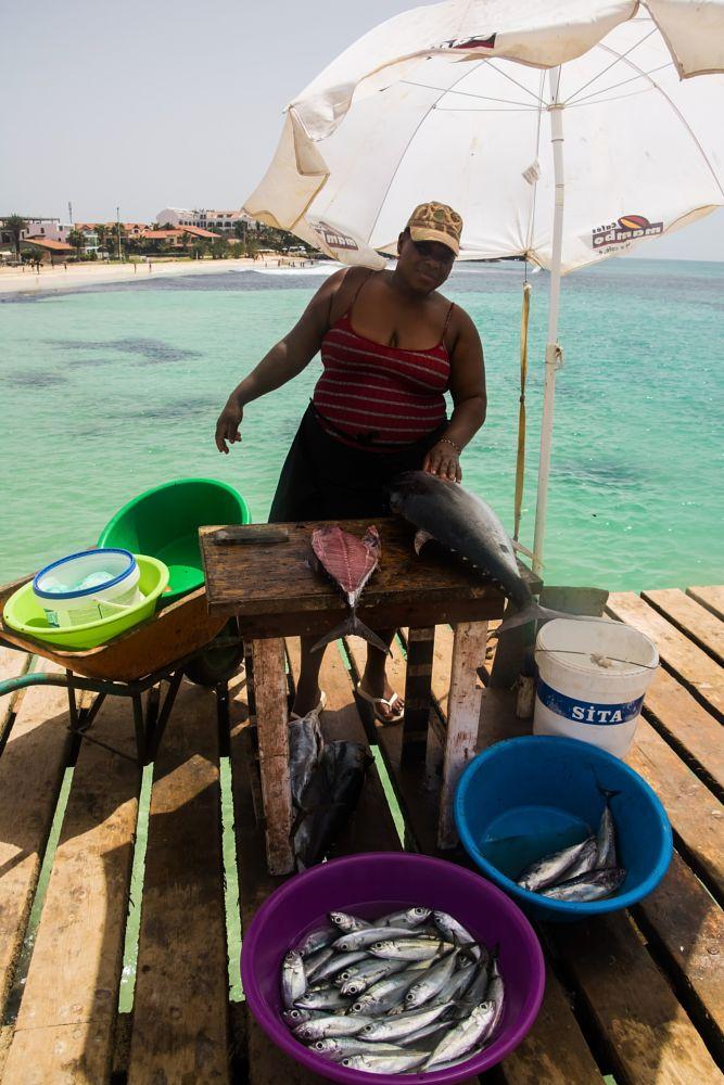 Photo in Landscape #selling #fish #lady #cape verde #pier #sea #food