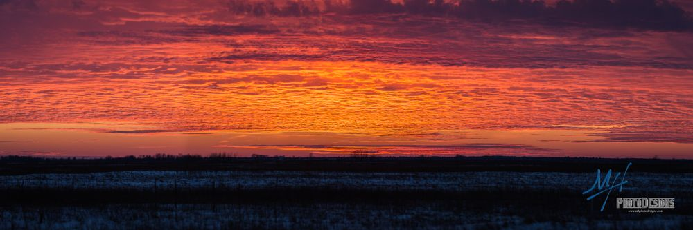 Photo in Landscape #colors #sunset #evening #sky line