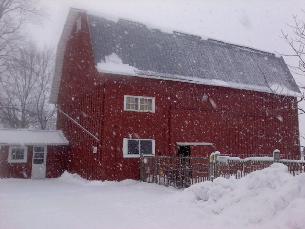 Photo in Rural #snow #farms #barns
