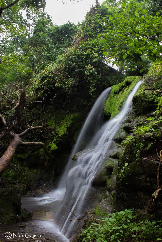 Photo in Nature #waterfall #nature #tree #landscape #slow shutter