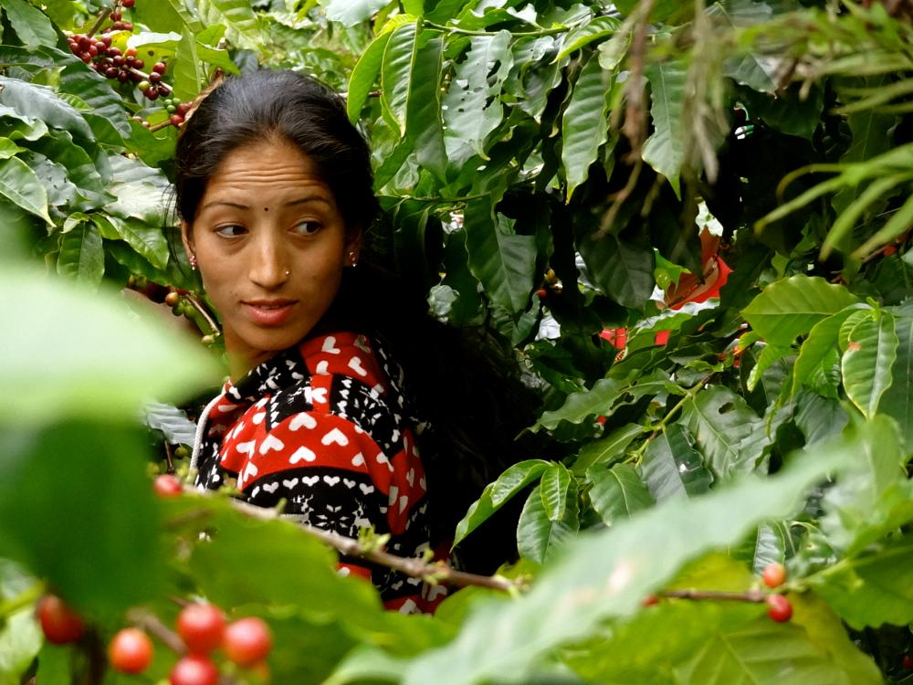 Photo in People #nature #nepal #women #travel