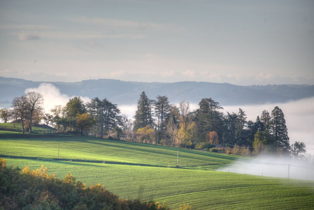 Photo in Landscape #villemagne #brume #paysage #hdr