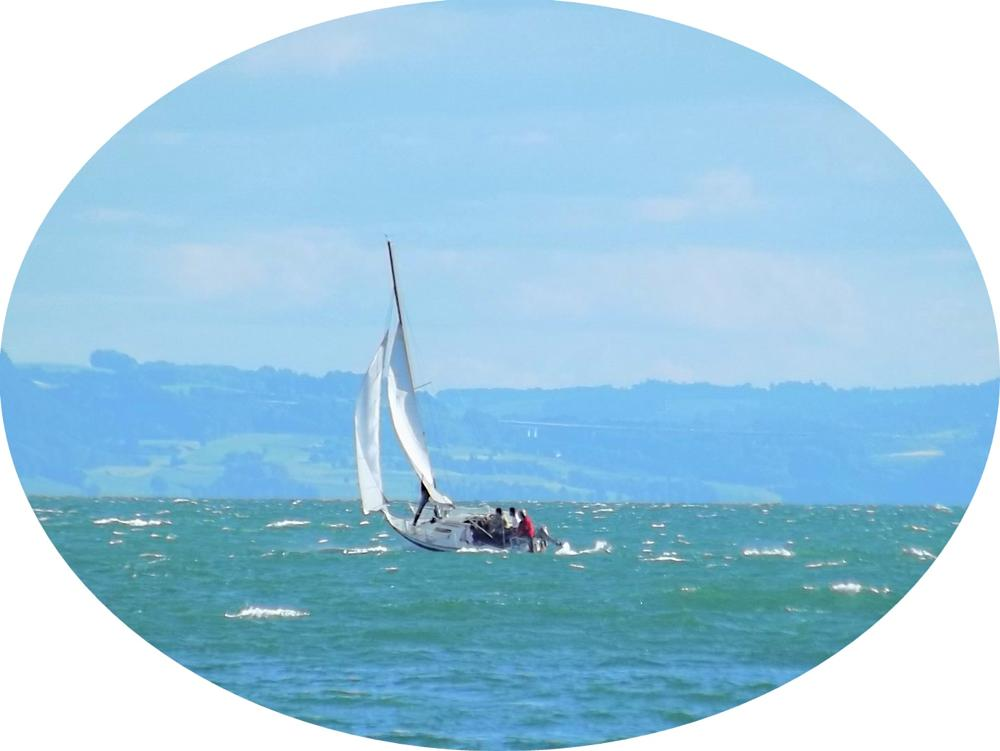 Photo in Sports #sailingboatlakeneuchatel