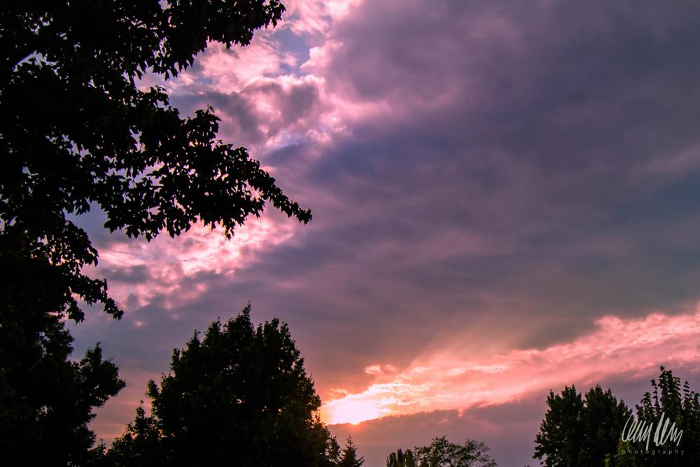 Photo in Random #sunrise #golden hour #seattle