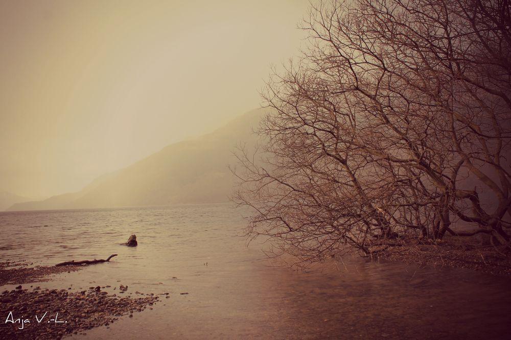 Photo in Landscape #lake #rain #quiet #travel