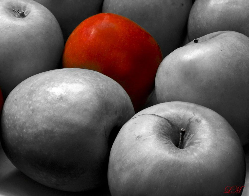 Photo in Still Life #still life #apples #black and white