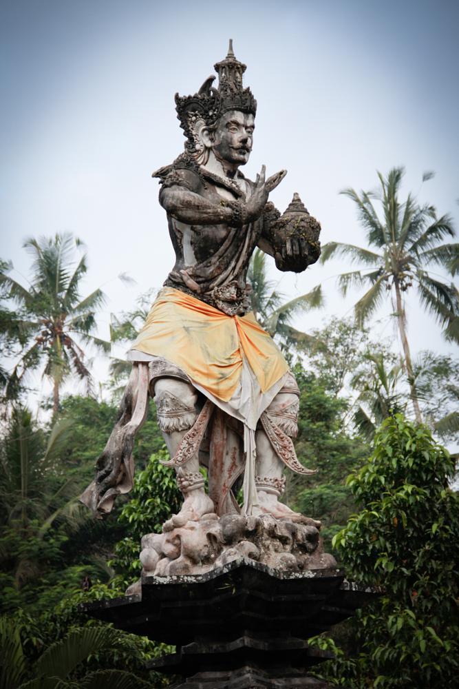 Photo in Nature #bali #indonesia #indu #temple