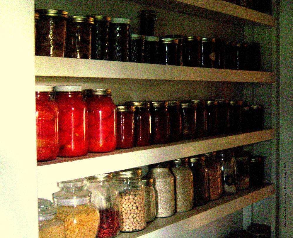 Photo in Still Life #vegetables #produce #canning #organic #organic gardening #still life