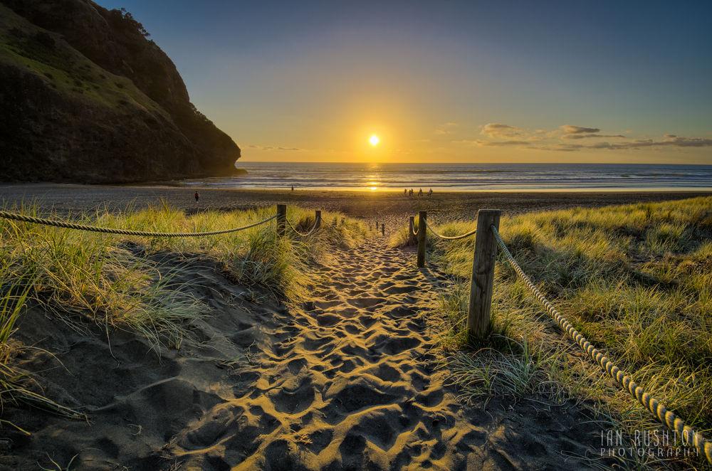 Photo in Random #sea #sand #beach #sunset #new zealand #ypa2013