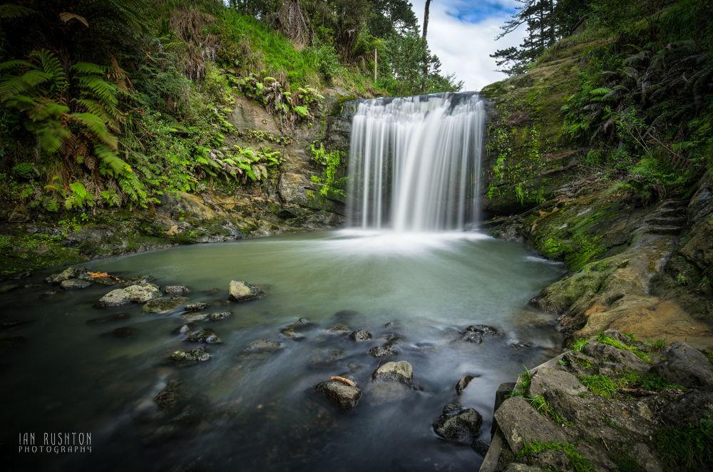 Photo in Random #waterfall #auckland #new zealand #rocks #water #ferns