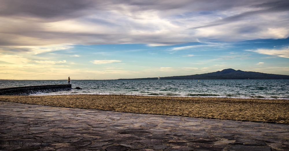 Photo in Landscape #mission bay #auckland #sea #sand #island #new zealand