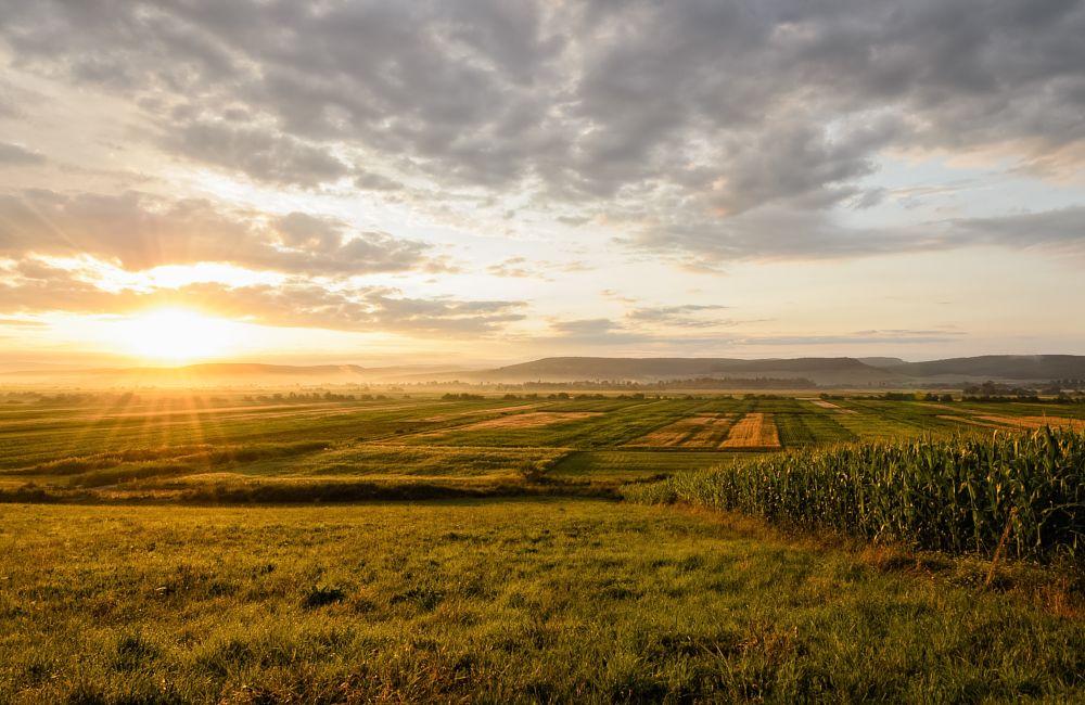 Photo in Landscape #taj #vadaszat #mures #sunrise #morning #landscape #dawn #landscapes #sky #clouds #rural #countryside #agriculture #nature #natural #plain #grass #hills #mist #serene