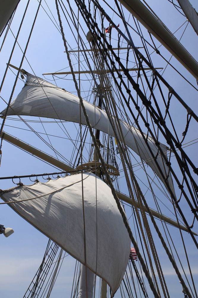 Photo in Landscape #sails #rope #boat