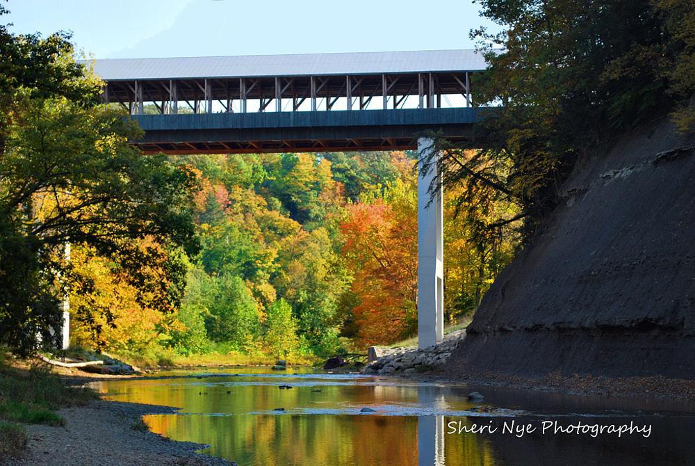 Photo in Landscape #photograph landscape bridge