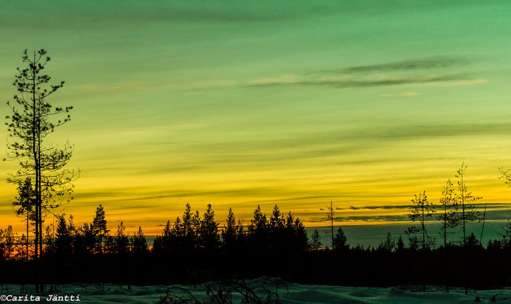 Photo in Landscape #forest #sunset #winter #north #finland #canon #eos #1200d