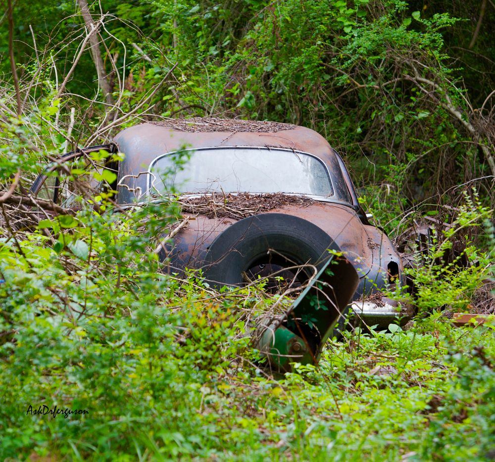 Photo in Cityscape #old car #car #car in woods