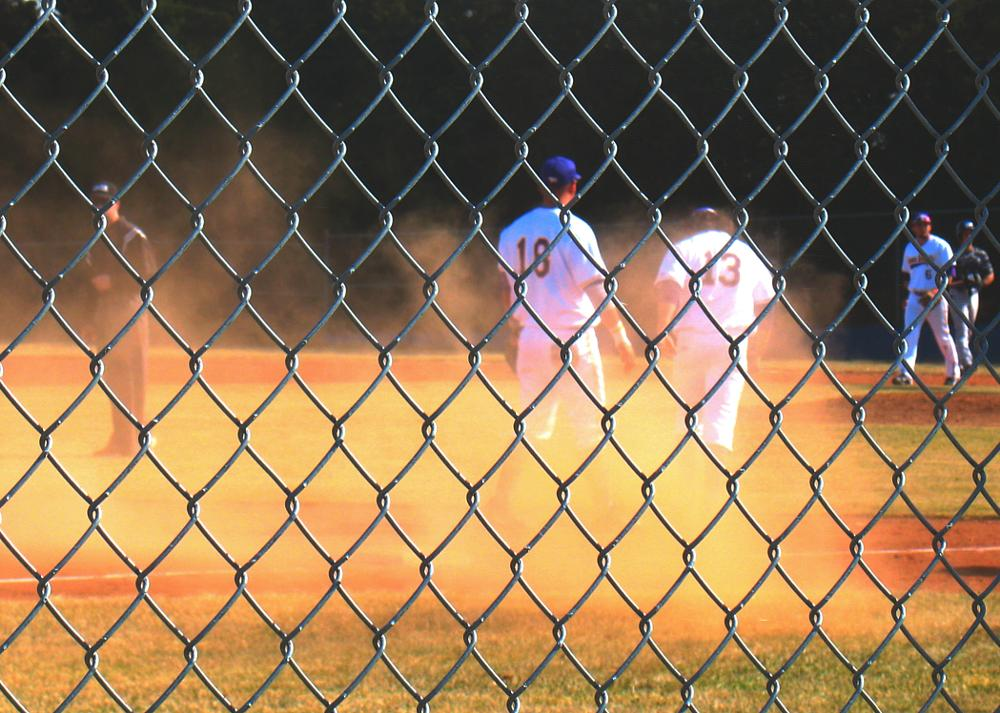 Photo in Sports #sports #baseball #college #college sports