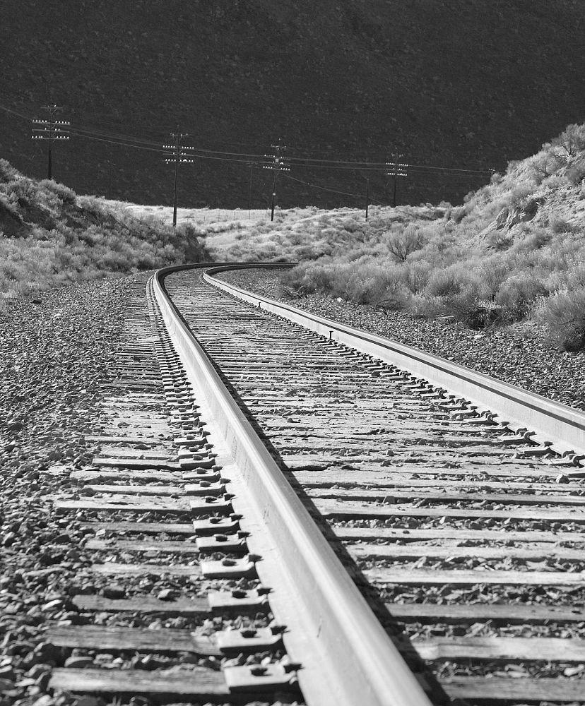 Photo in Black and White #tracks #train #black and white #places #landscape