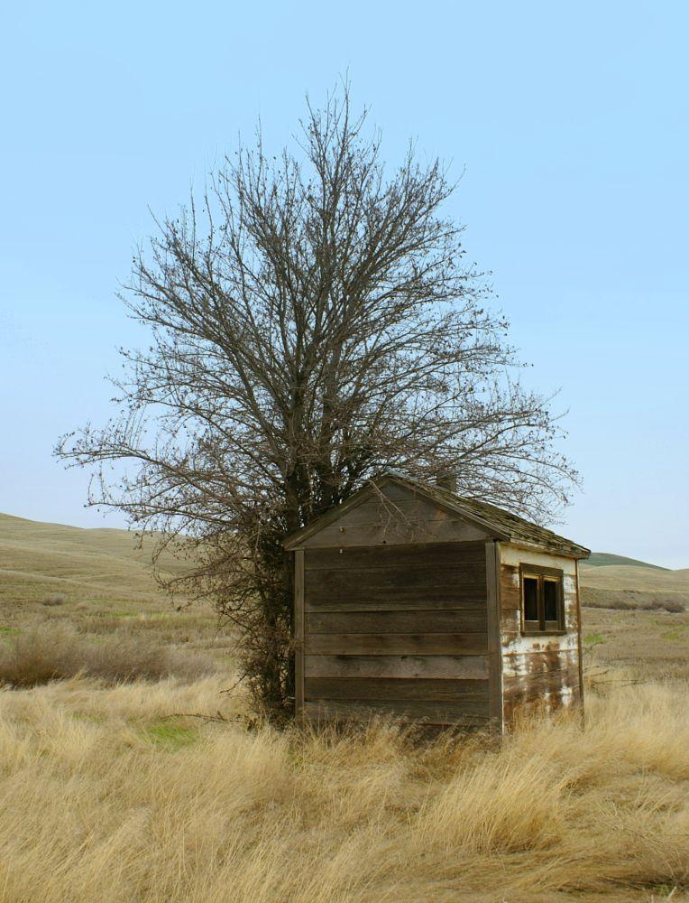 Photo in Landscape #vintage #farm #places #landscape #travel #nature #wood #wheat