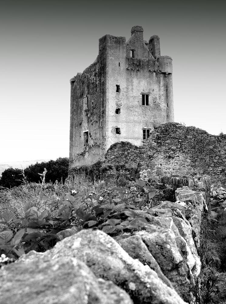 Photo in Black and White #castle #black and white #vintage #ireland