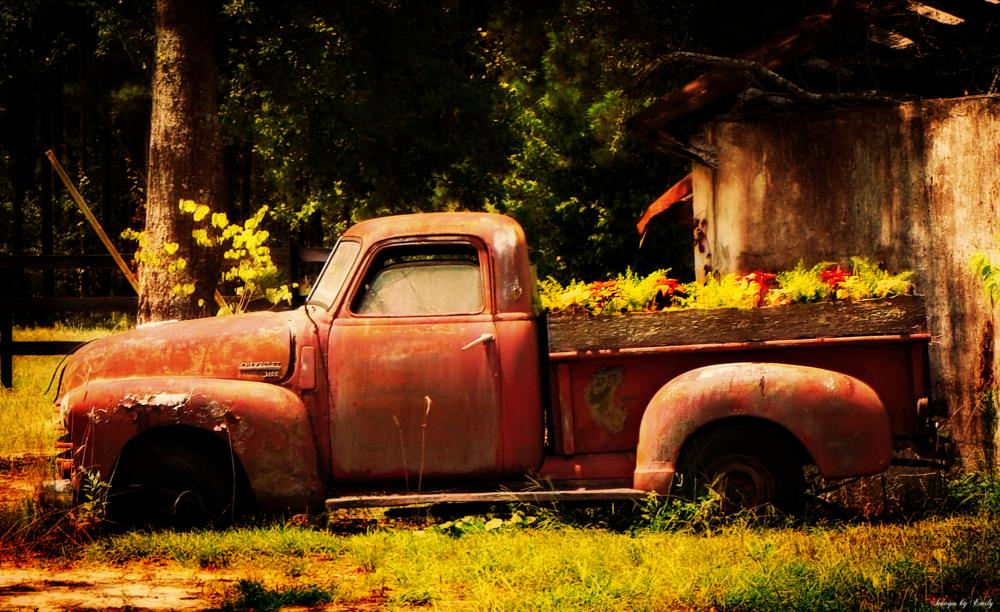 Photo in Landscape #truck #flowers #nature
