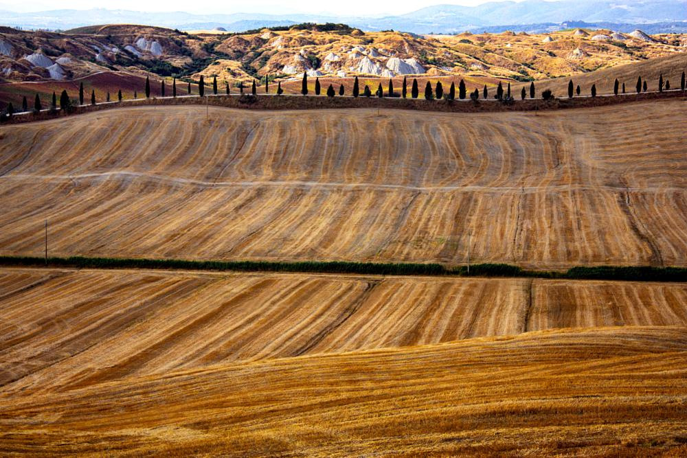 Photo in Landscape #crete #senesi #toscana #italia