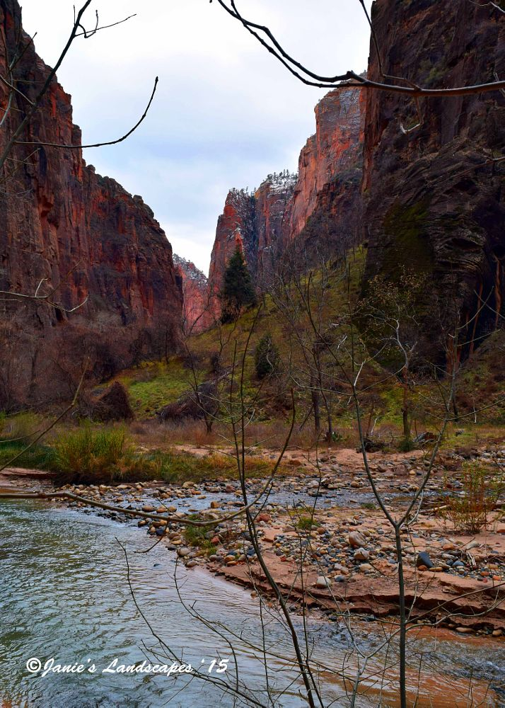 Photo in Landscape #the narrows #zion national park #the virgin river