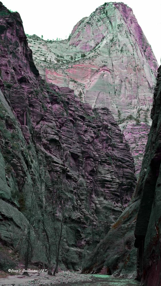 Photo in Landscape #the narrows #zion national park #national parks during the holi