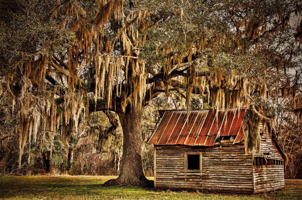 Photo in Rural #barn #rustic #weathered