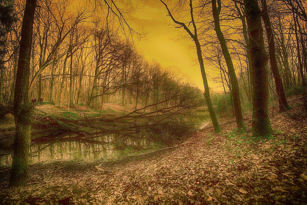 Photo in Landscape #lake #warm #winter #netherlands