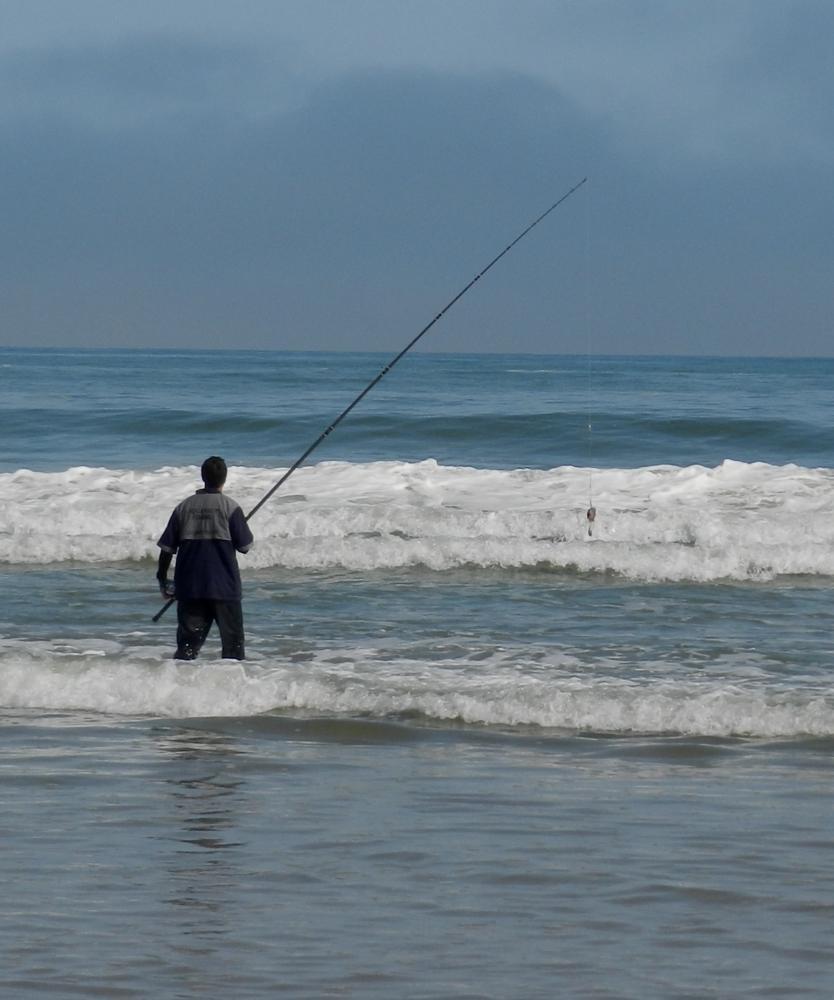 Photo in Sea and Sand #fish #fishing #shark #ocean #coast #sea #africa #waves #wave