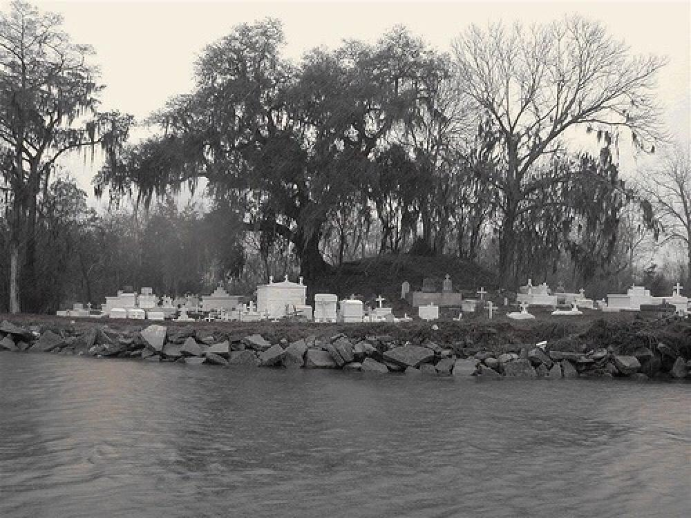 Photo in Black and White #new orleans #bayou #cemetery #graveyard #water #black & white