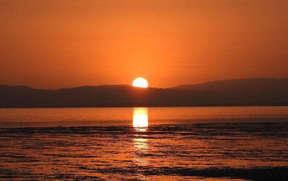 Photo in Landscape #sunrise #san francisco bay #bay trail #foster city #low tide