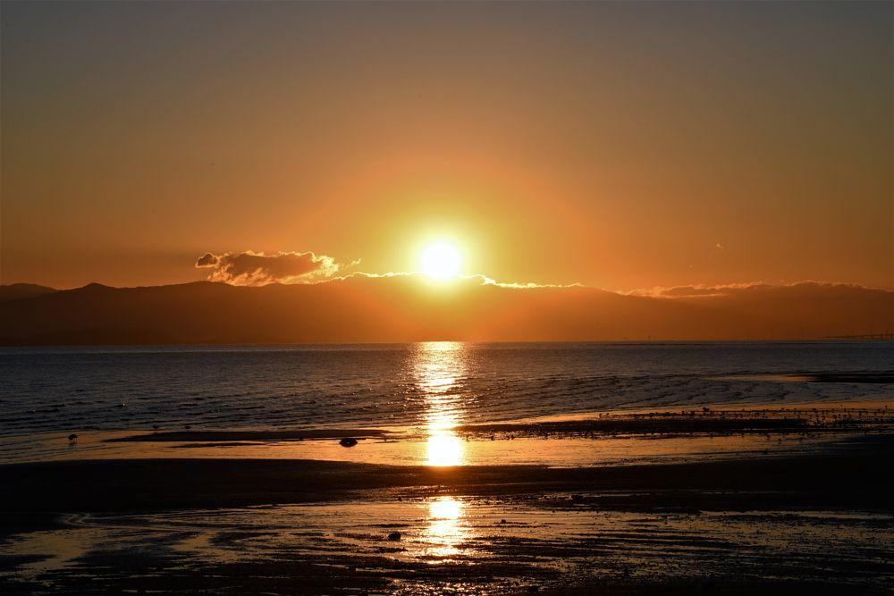 Photo in Landscape #sunrise #sanfranciscobay #fostercity #baytrail