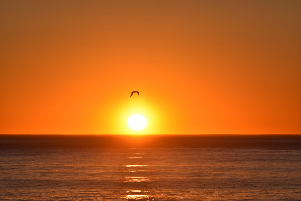 Photo in Sea and Sand #sunset #pacifica #pacific ocean