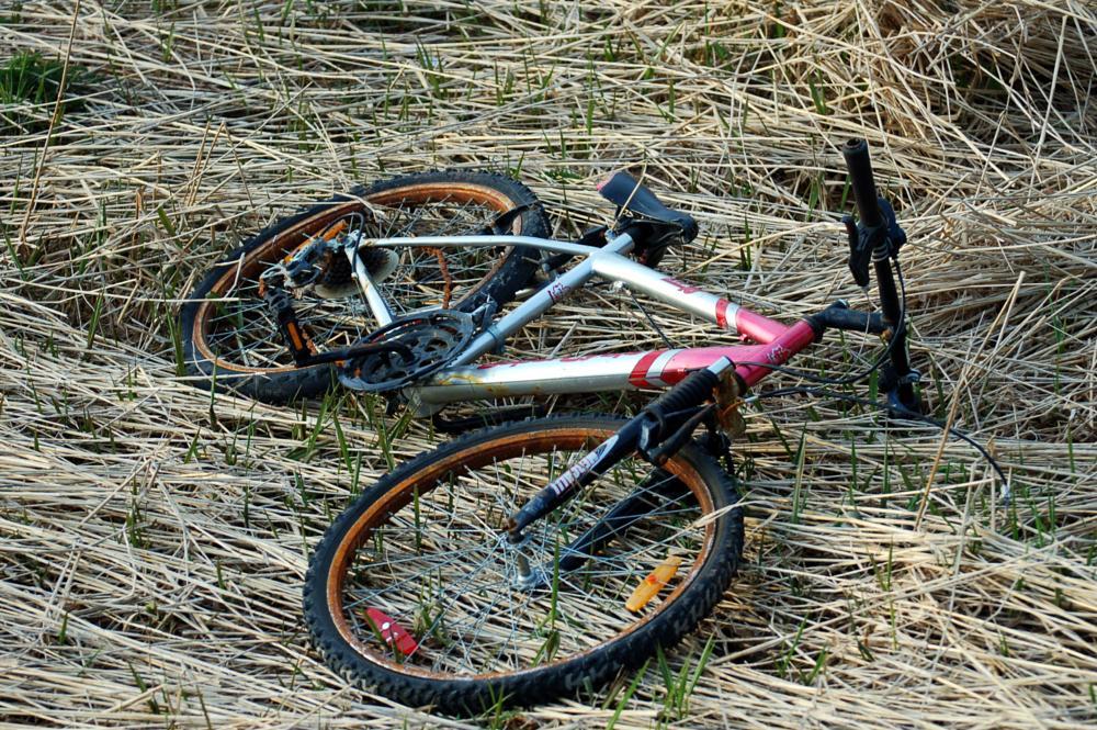 Photo in Random #bike #colorful #grass