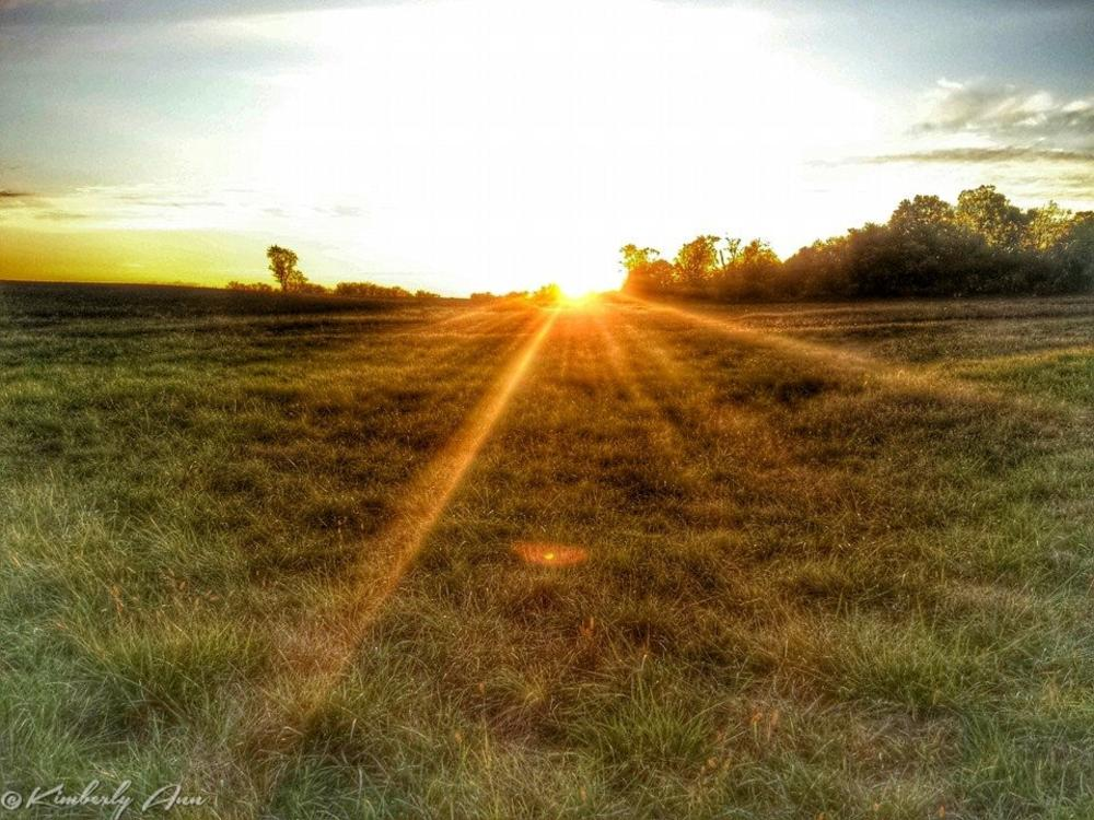 Photo in Landscape #sunsets #dusk #dawn #farming #godscountry #nature #countryliving #nj