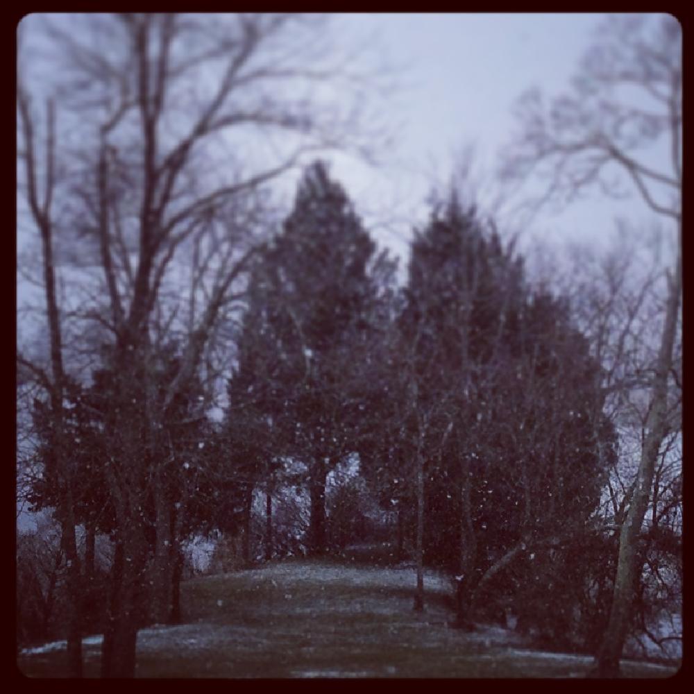 Photo in Landscape #snow #menantico creek #southern new jersey #meadow