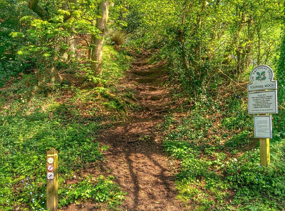 Photo in Rural #toothill #churnet #valley #nature #hdr #walks #nexus5