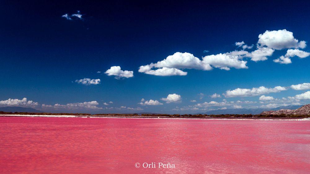 Photo in Landscape #pink #rosa #blue #azul #peravia