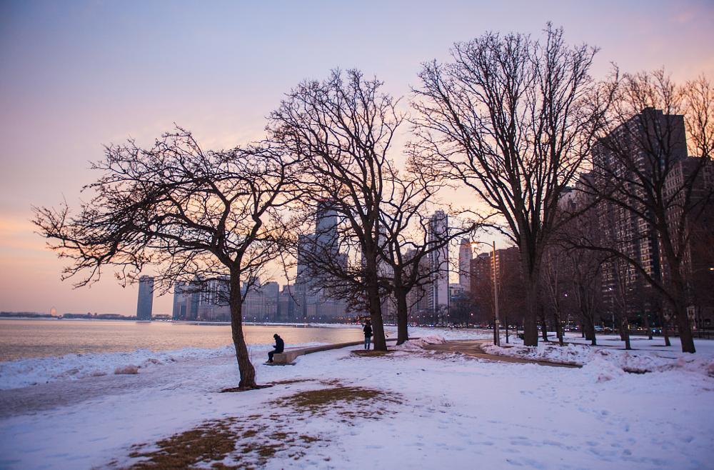 Photo in Nature #chicago #winter #lakeshore